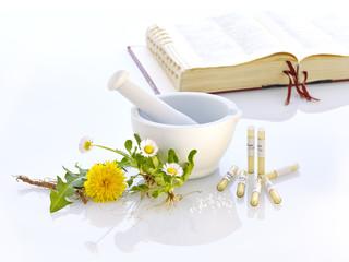 Mörser Löwenzahn Gänseblümchen Naturmedizin