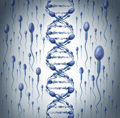 Male DNA