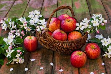 Korb mit Äpfeln und Apfelblüten auf Holz