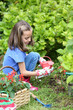 Little girl watering plant in garden