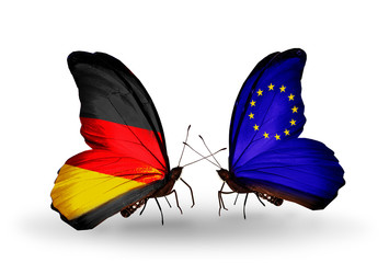 Two butterflies with flags European Union