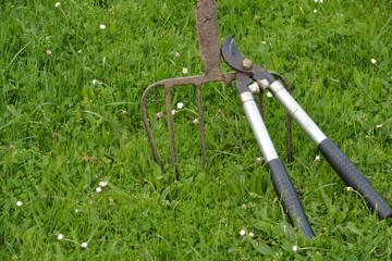utensilios y herramientas para podar y cortar leña