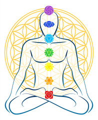 Flower Of Life Chakras Man