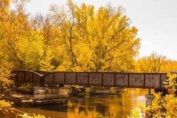Railroad Bridge in Autumn Trees