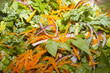 A close up on a healthy salad