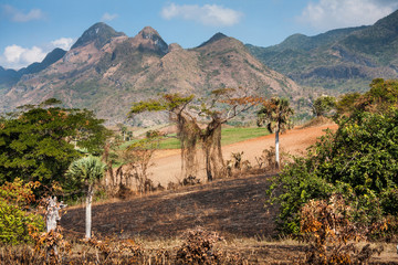 view of Cuban natural landscape