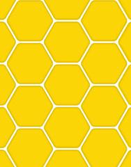 Sweet Honey Vector Illustration Background