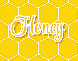 Sweet Honey Vector Illustration Background