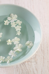 Close up of white hydrangea flowers floating in bowl of water
