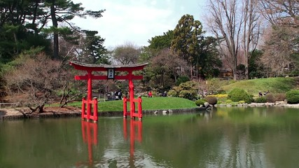 Japanese garden spring at the Brooklyn Botanical.