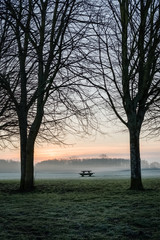 Single bench and table in park early morning