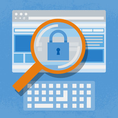 Magnifying website, Internet security