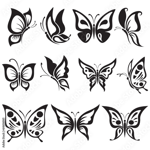 Vector set black and white butterflies - 64606861