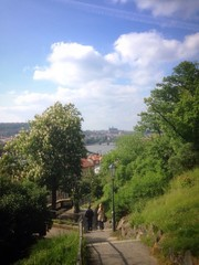 a view from Vyšehrad