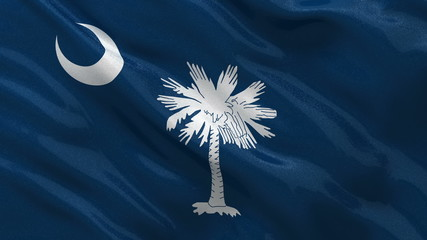 US state flag of South Carolina waving in the wind seamless loop