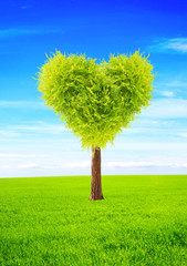 Heart shape tree