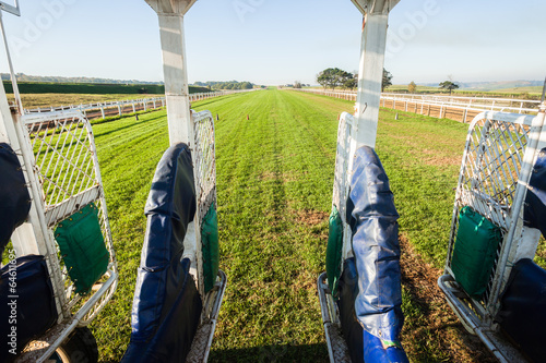 Fototapeta Horse Racing Start Gate Training