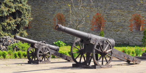 Cannons of the castle