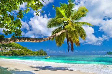 fototapeta idylliczny tropikalnej scenerii - Seszele