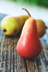 pere bio - pears organic farming