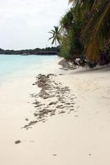 Playa de las Islas Maldivas