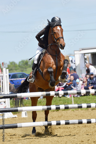 Papiers peints Equitation horse jumping