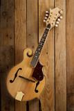 mandolin on wooden slats background