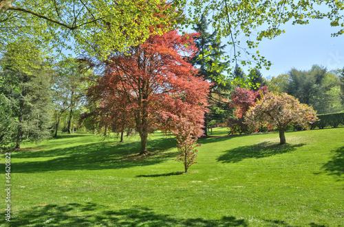Papiers peints Jardin France, the Meissonnier park in Poissy
