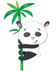 Little panda on bamboo