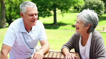Happy senior couple relaxing in the park with a picnic basket
