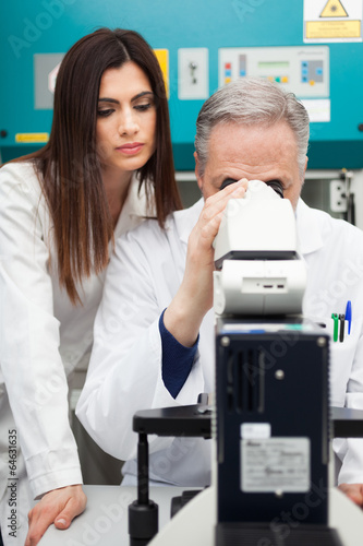 Researchers at work