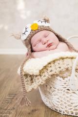 Newborn Kleine Eule in einem Häkelkorb, schlafend