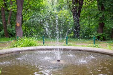 Springbrunnen im Wald