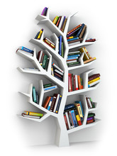 Baum der Erkenntnis. Bücherregal auf weißem Hintergrund.