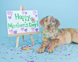 Happy Mother's Day Puppy - Fine Art prints