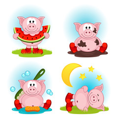 pig in action - vector illustration
