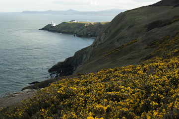 Howth in a Sunny Day, Ireland