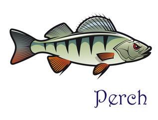 Cartoon perch