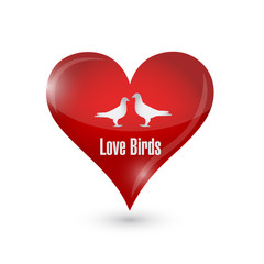 love birds heart illustration design
