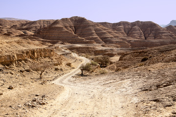 Dusty Road In The Negev Desert