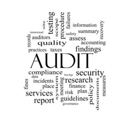 Audit Word Cloud Concept in black and white