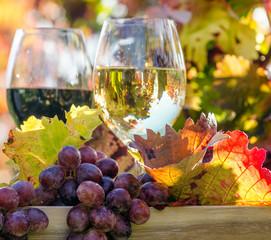 Den Herbst genießen: Weinprobe im Wingert :)
