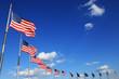 American flags - 64654850