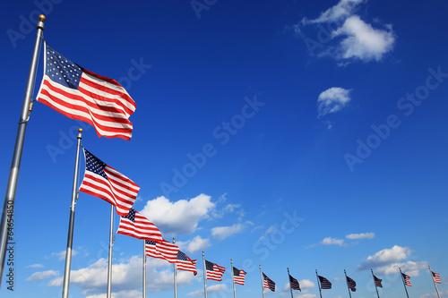Foto op Plexiglas Historisch mon. American flags