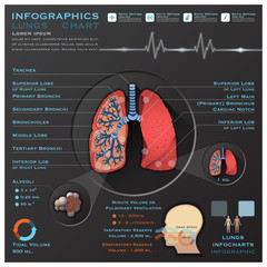 Lungs And Respiratory System Medical Infographic Infochart