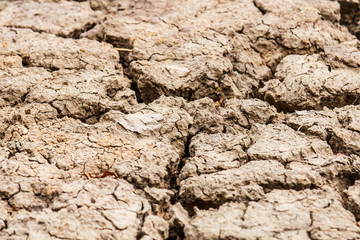 Closeup of dry soil.