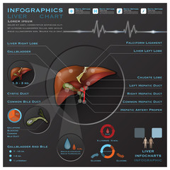 Liver And Gallbladder Medical Infographic Infochart