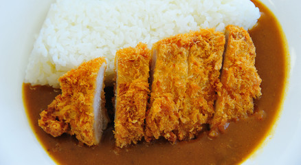 Tonkatsu with Rice