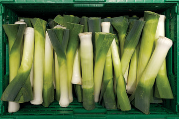 Green crate with leeks