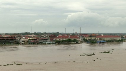 Trees damaged by floodwater, Mekong, Kampong Cham, October 2013